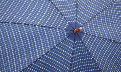Fish & Associates Insurance - Umbrella Liability